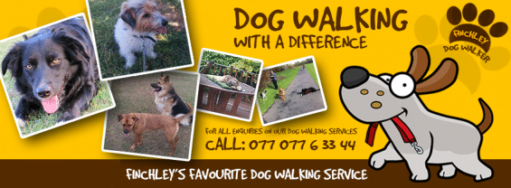 North Finchley Dog Walker