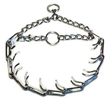 dog_prong_collar-730053