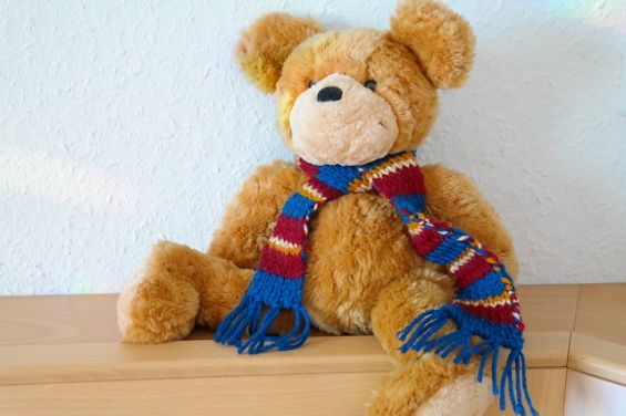 teddy bear dog toy