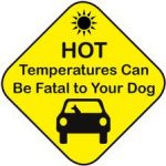 Why Heat is Not Good for Dogs
