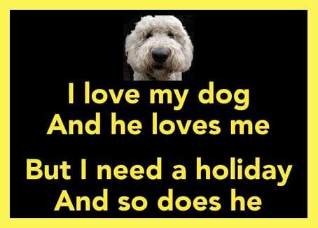 Αγαπώ το σκύλο μου..
