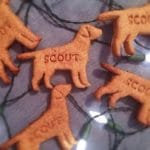 Recipes for dog treats with seasonal ingredients