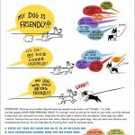 Some Dogs Need Space – ask before approaching