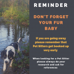 Dont forget your pet when holiday planning