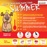 Top Summer Dangers for Dogs Part One